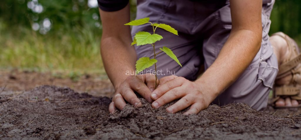 4 Earth Day Activities With Children